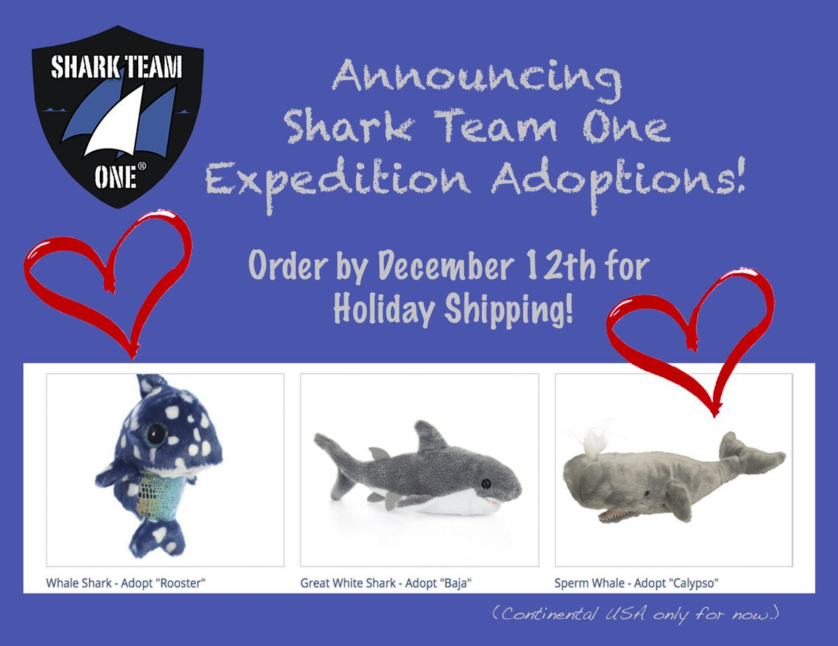 shark team one sharkteamone twitter order by dec 12th to get these support shark team one in time for the holidays sharkteamone com shark team one expedition adoptions html