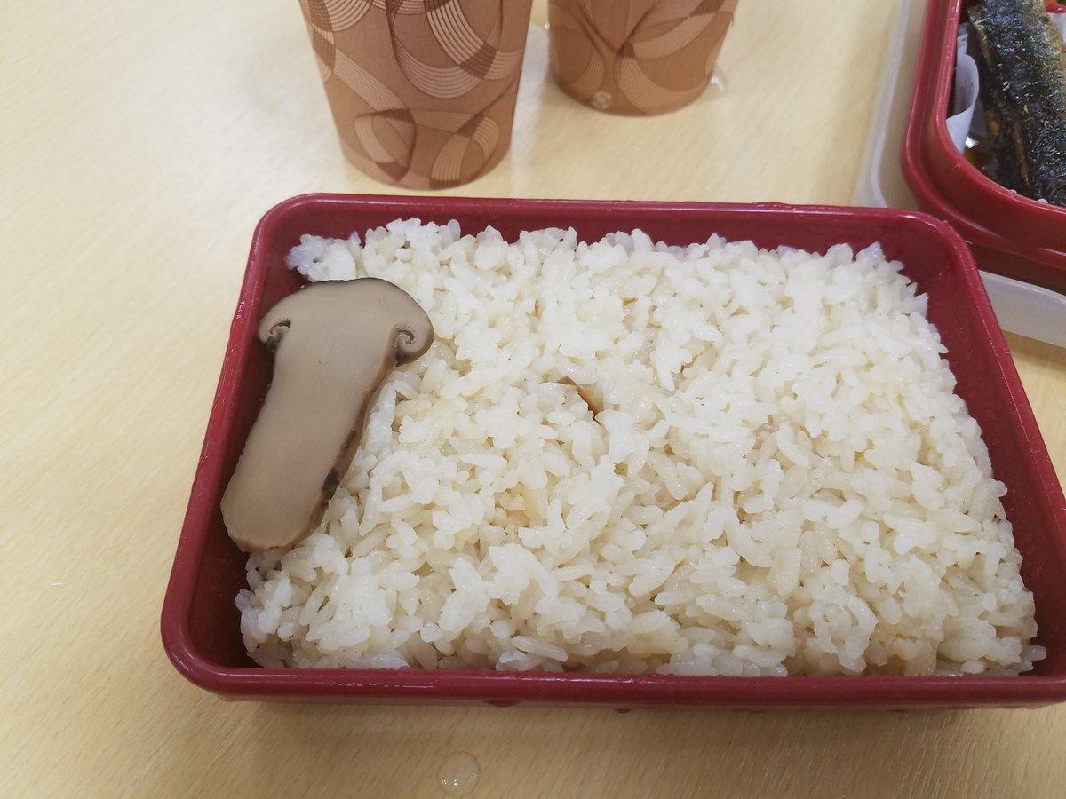 今日の日替わりは松茸弁当だというので頼んでみた。 ちがう これはちがう
