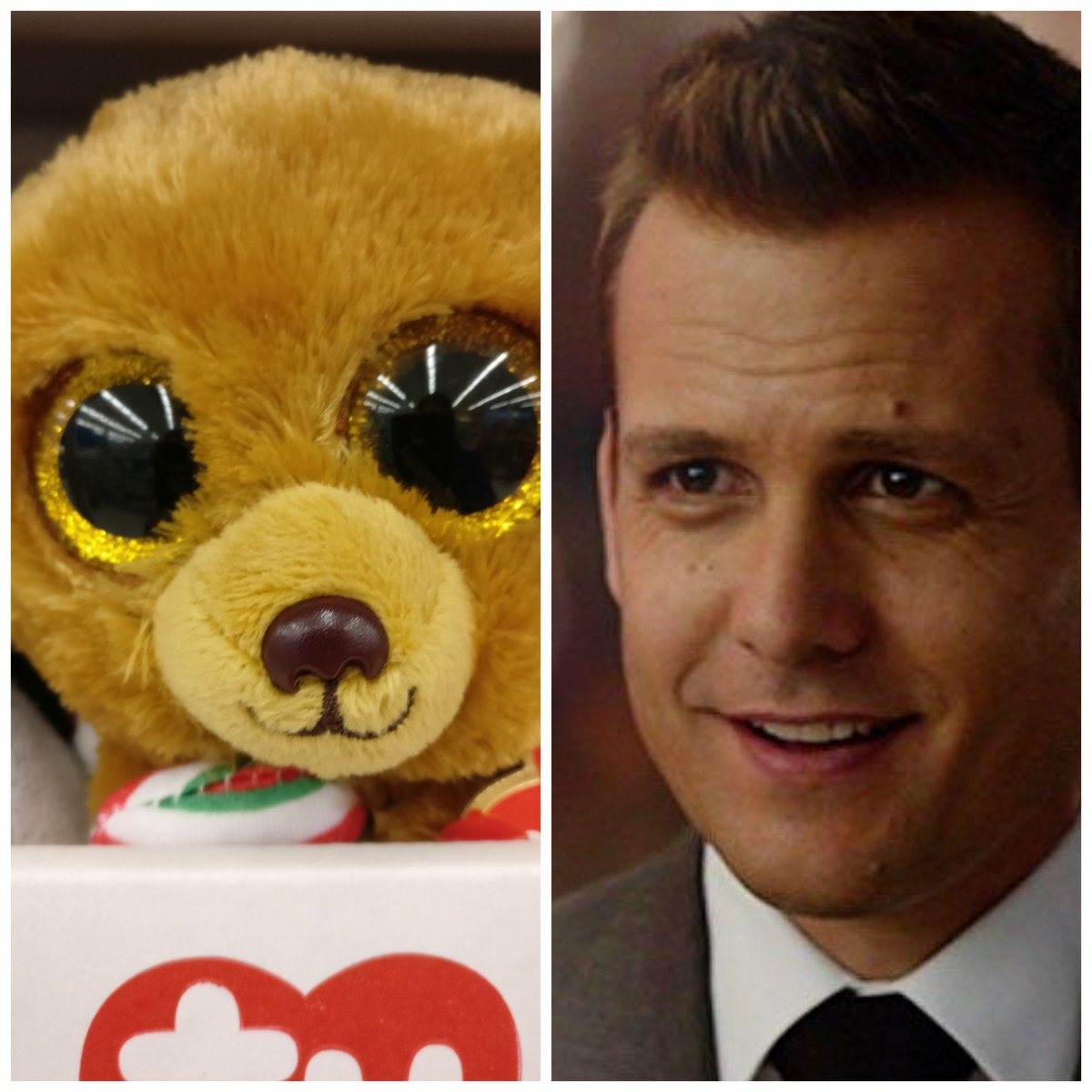 I saw a #HarveySpecter plushie at the store. I&#39;m shook. The eyes, the smile... Samesies! Happy Monday  <br>http://pic.twitter.com/5t2tRS88GH