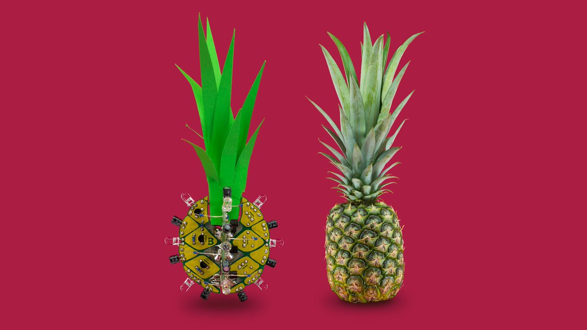 Ananas. Get it by joining the #BoldportClub!