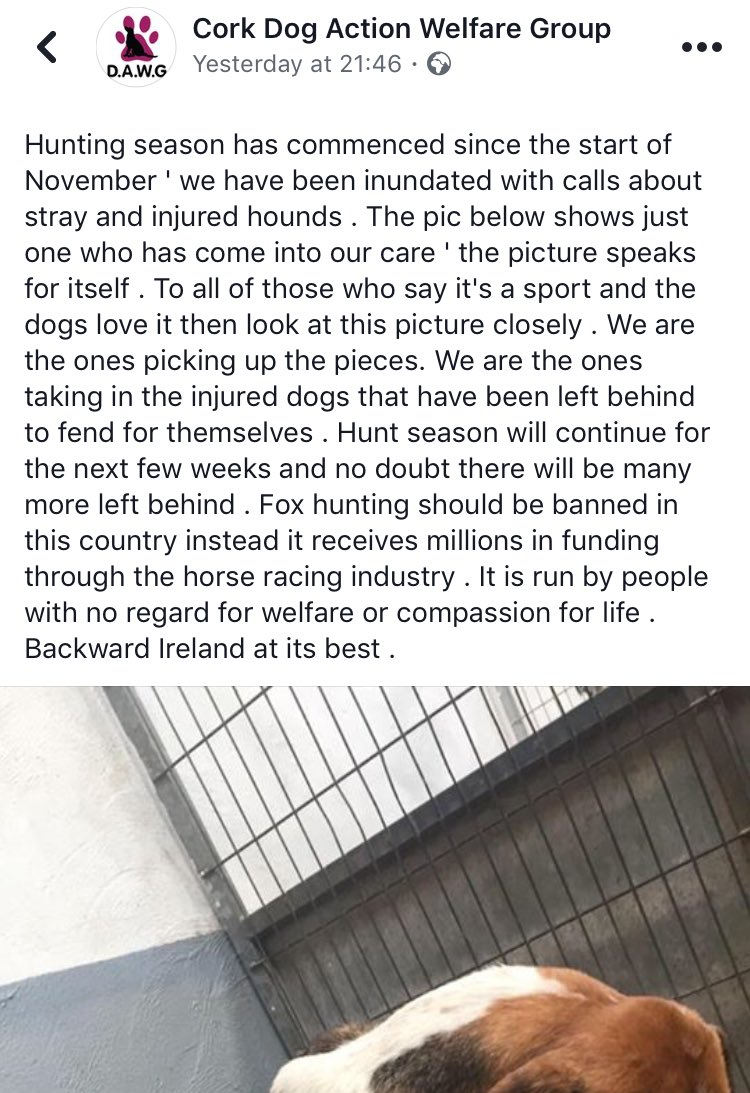 sport hunting should be banned