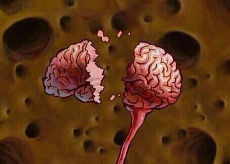 My brain at this point in the semester
