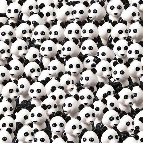 Vous voyez des #pandas 🐼 partout? C'est normal. Maintenant c'est un #chien qu'il faut trouver. 👀 RT si tu l'as 😜