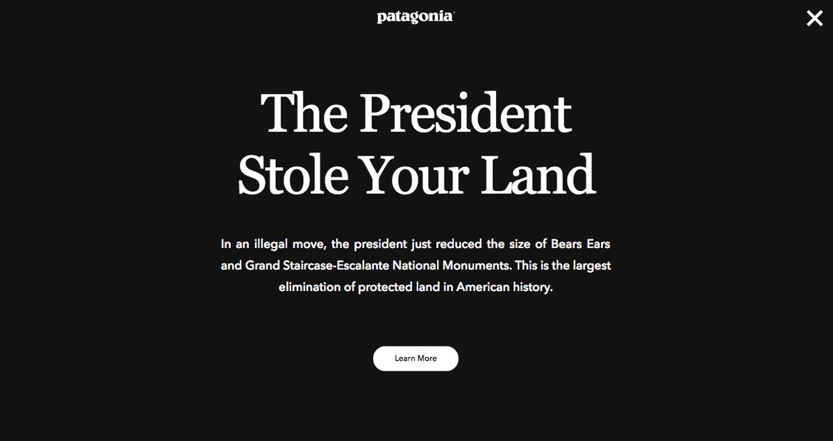 This is what's on Patagonia's home page right now.