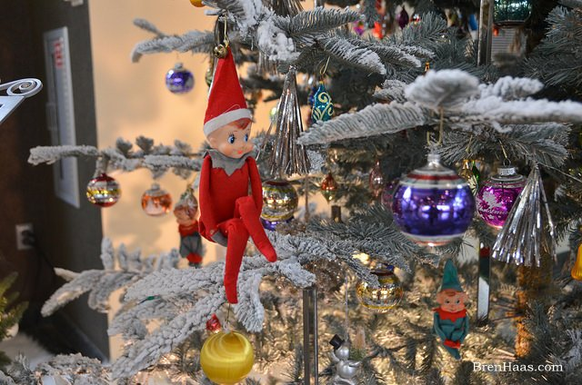 Check out this little guy sitting in the tree! #Christmas #elf