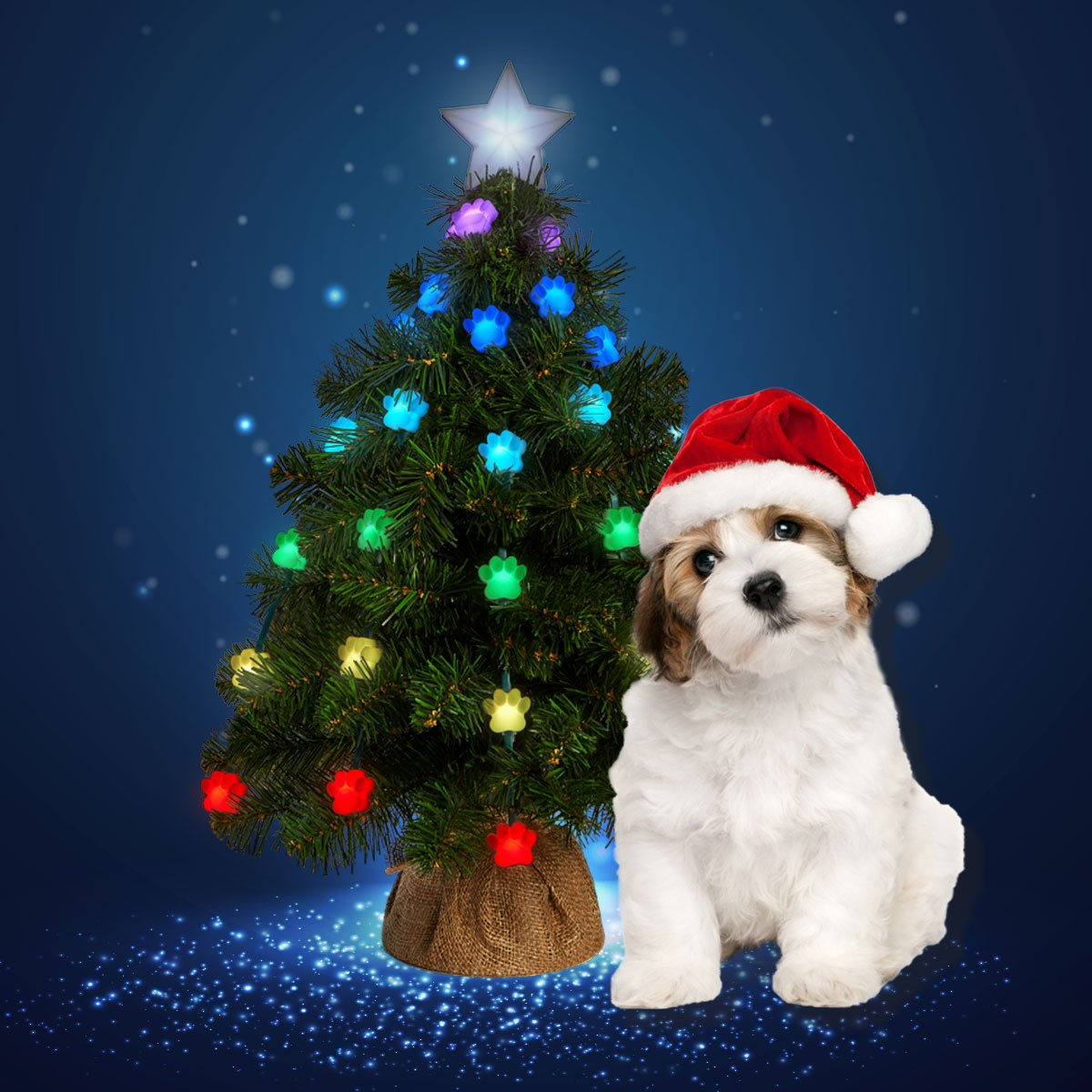 Itu0027s The Ultimate #Christmas Tree. Available At Http://geekmytree.com #dogs  #pets #shopping #family #SharkTank #Kickstarterpic.twitter.com/Oi3UqeqEzE