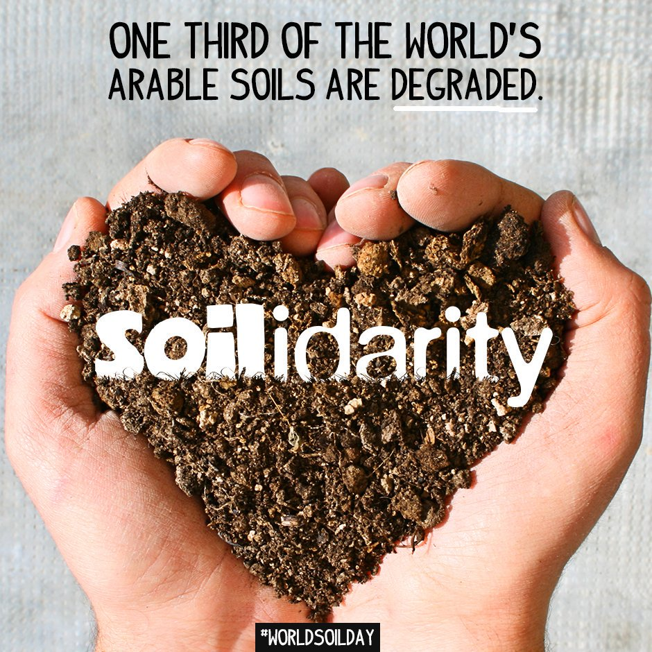 Today is #WorldSoilsDay and we are standing in #Soilidarity, are you? #WorldSoilDay https://t.co/spgwphtE9N