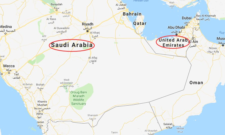 United Arab Emirates says it has formed new a military and economic partnership with Saudi Arabia separate from the Gulf Cooperation Council (GCC): media reports