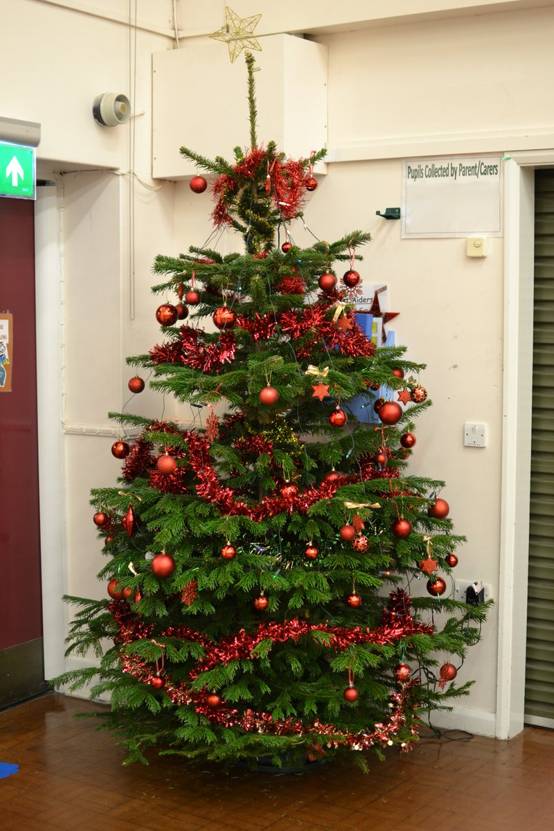 Newman Christmas Trees.Newman Special School On Twitter Thank You Desertultrarun