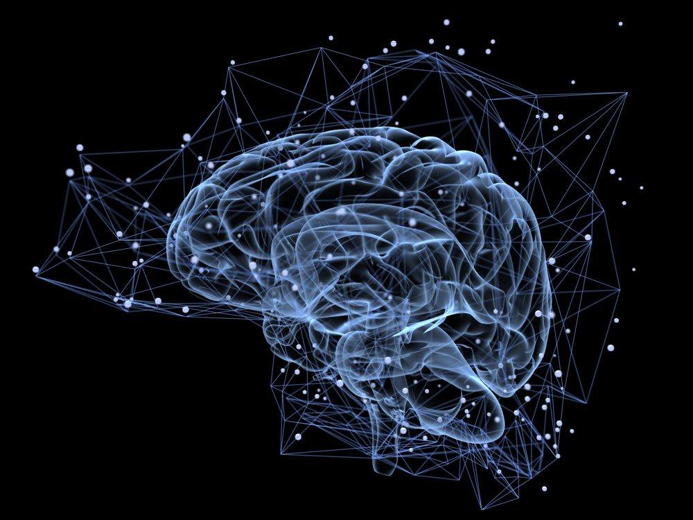 El cerebro puede 'ver' lo que está a la vuelta de la esquina. Un estudio descubre que el cerebro humano es capaz de predecir lo que verán nuestros ojos antes de que lo veamos :O  https://t.co/ab5q8ihJf2 #Ciencia