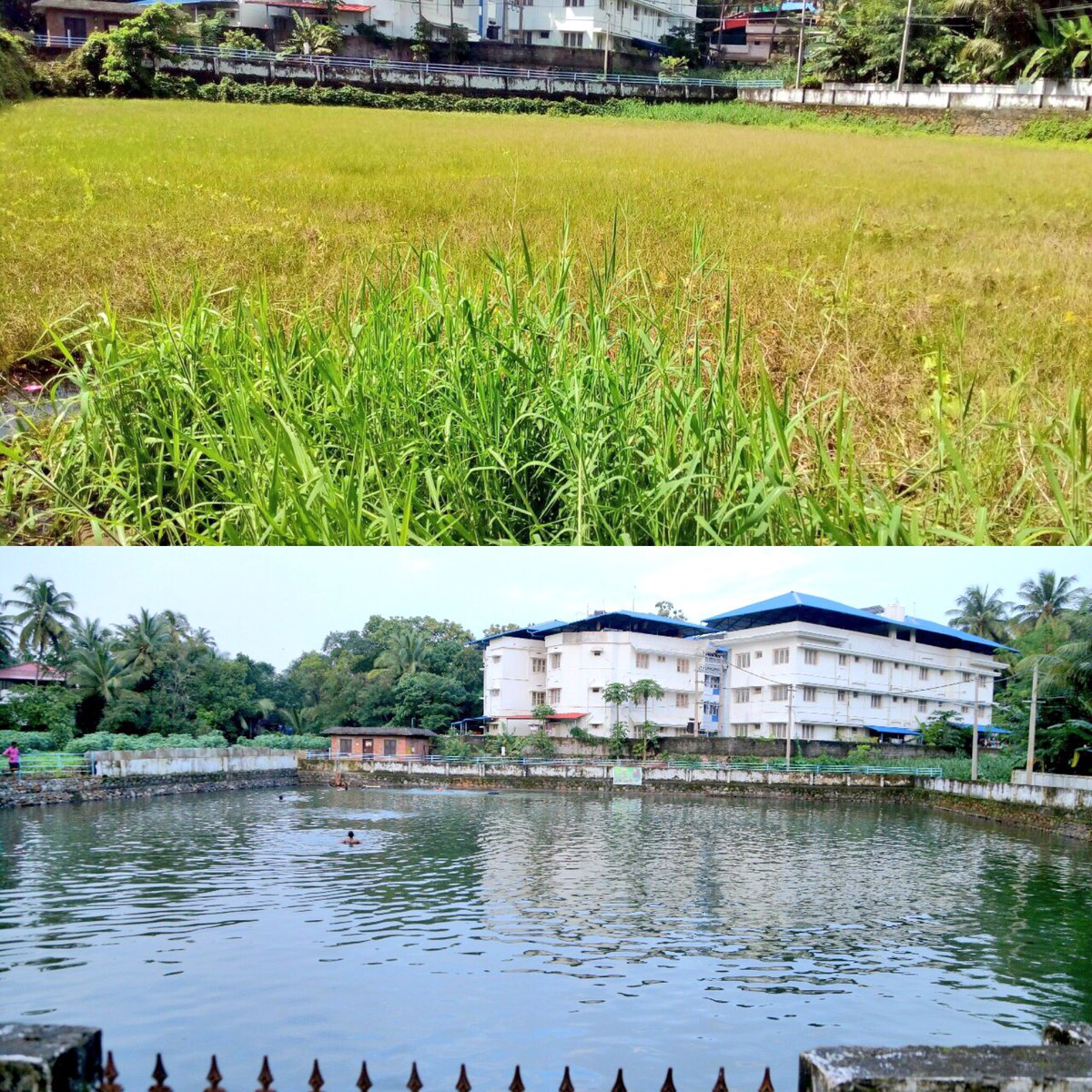 Cleaning of 9 ponds in Thrissur, Kottayam and Idukki, in Kerala, was completed by @ArtofLiving volunteers.