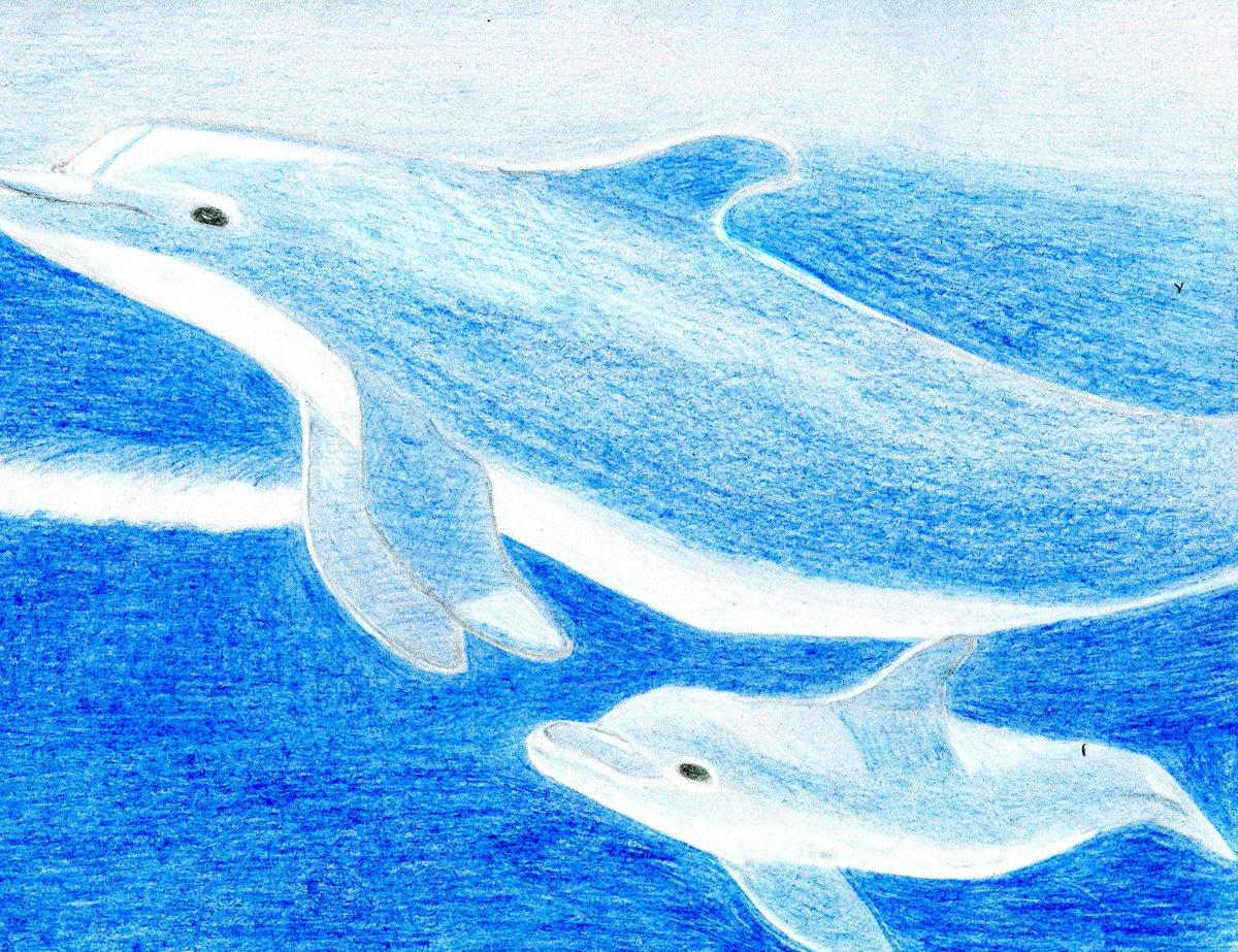 офицер рлс рисунок с дельфином нарисовать если здесь