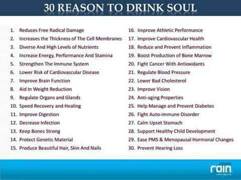 Soul pure wellness price