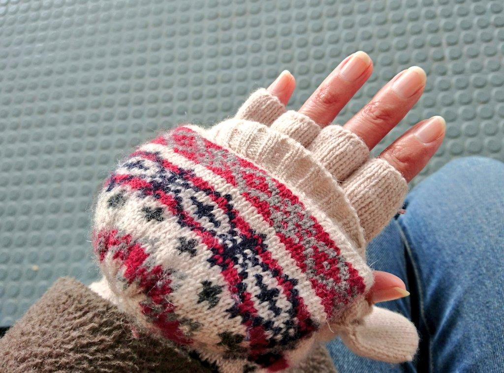 今日は忘れず手袋! もう何年も前に買った無印のミトン! いつまでもお気に入り♡ #無印良品 pic.twitter.com/rCeeY1KObb