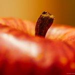 台所にあったリンゴが1億6960万画素分の情報量だとこうなる。#ピクセルシフトマルチ撮影 #α7RI…