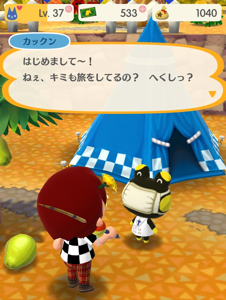 ついにどうぶつの森唯一のゲーム実況者であるカックンがキャンプにやって来たぞ!!顔出しは当然NGです😷…