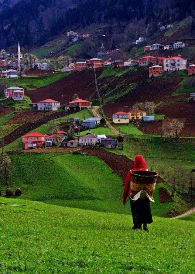 Aşağı Sayraç Köyü / Trabzon https://t.co...