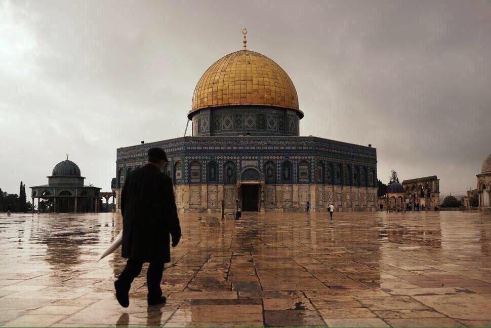 RT @FrFsha_1: جميلة انتِ كيوسف وخانك العالم كإخوته   #القدس_عاصمة_فلسطين_الابدية  #القدس #فلسطين https://t.co/E3HQfIuLNY
