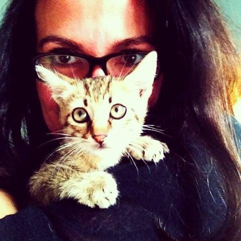 VIRGINIA APICELLA is the Script Supervisor on Drifter.  #script #supervisor #crew #filmcrew #crewlife #cat #cats #womeninfilms #supportindie<br>http://pic.twitter.com/m7KZoOe3Uc