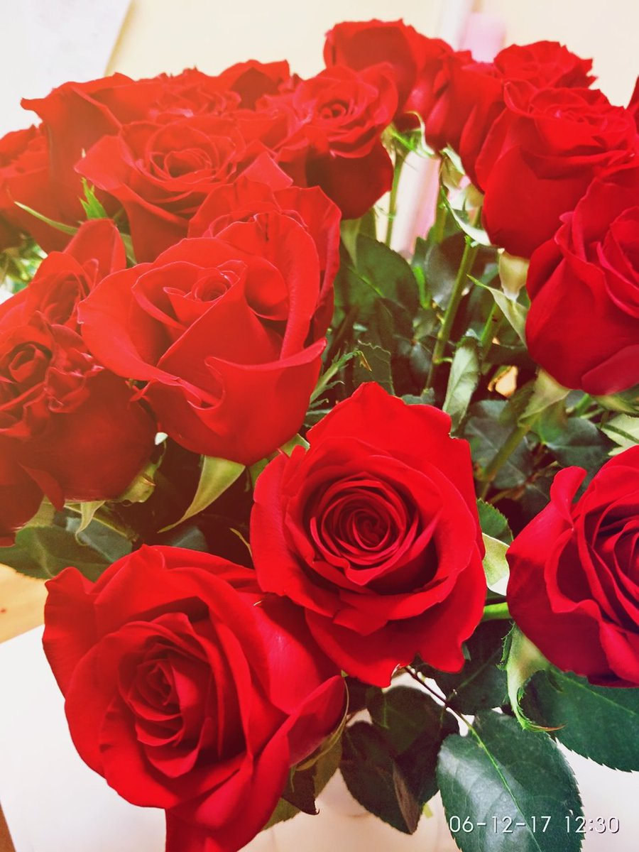 копатели картинки розы для милой батик