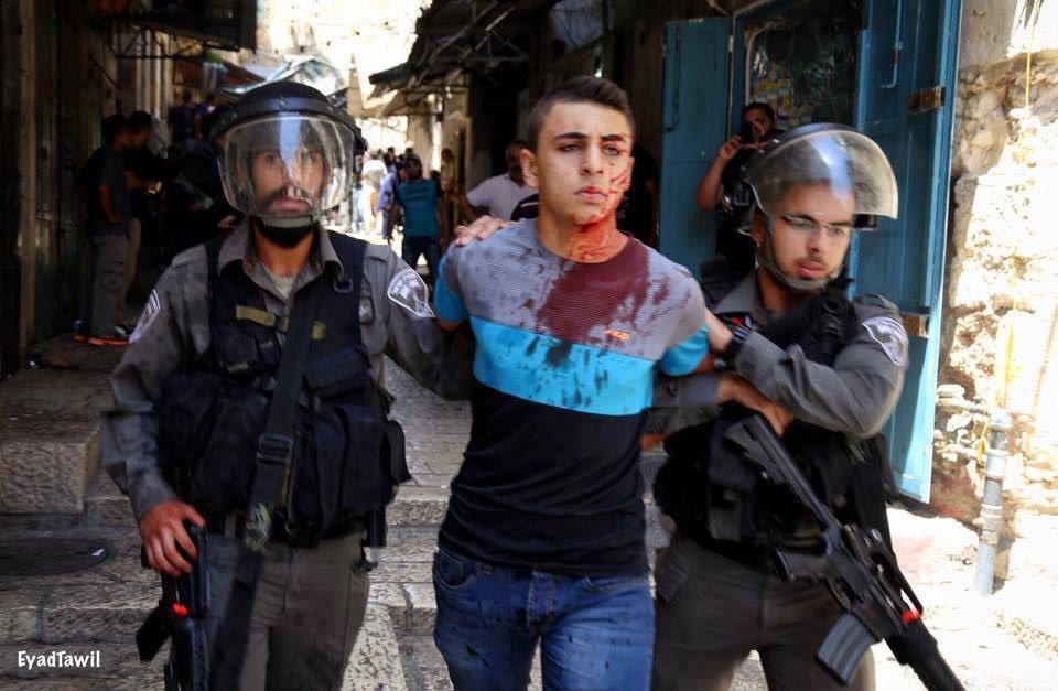 RT @HuriSltn: Filistinli çocuk gibi bakacaksın dünyaya.. Öylesine keskin, öylesine derin    #KuduseSahipCik https://t.co/BdkftQllTy