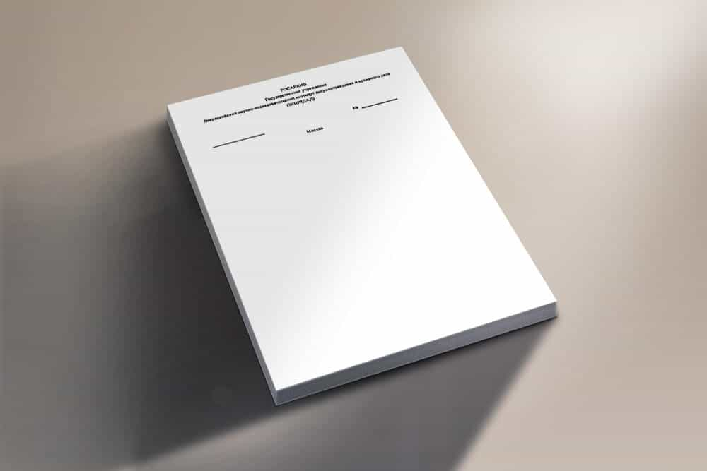 Образец фирменного бланка для ип скачать