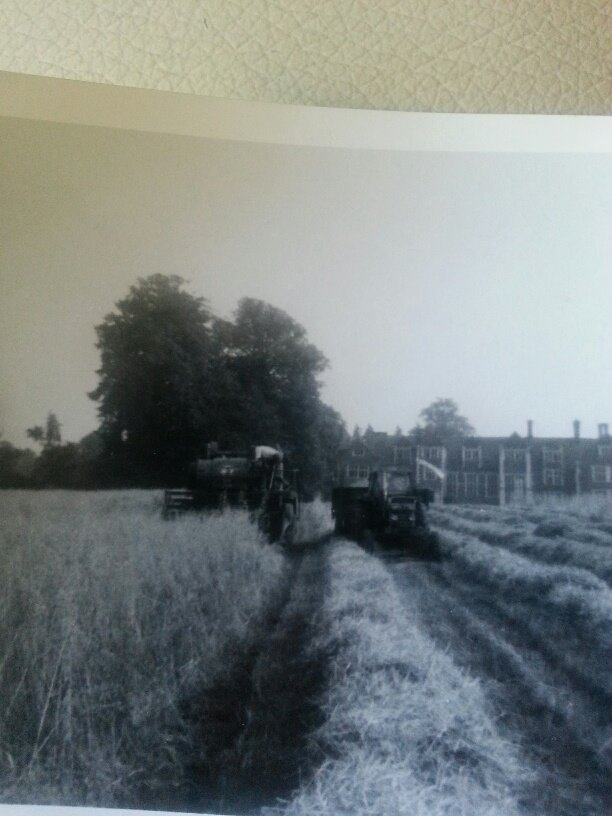 A gem for Throwback Thursday! We love these shots of combine harvesting at Loseley taken in the 60s by Avril Taylor (nee Warren). Its her brother Ian doing the hard work! Times change and we're excited about cattle returning to Loseley. #longhorns #beef #farmshop #naturalgrazing