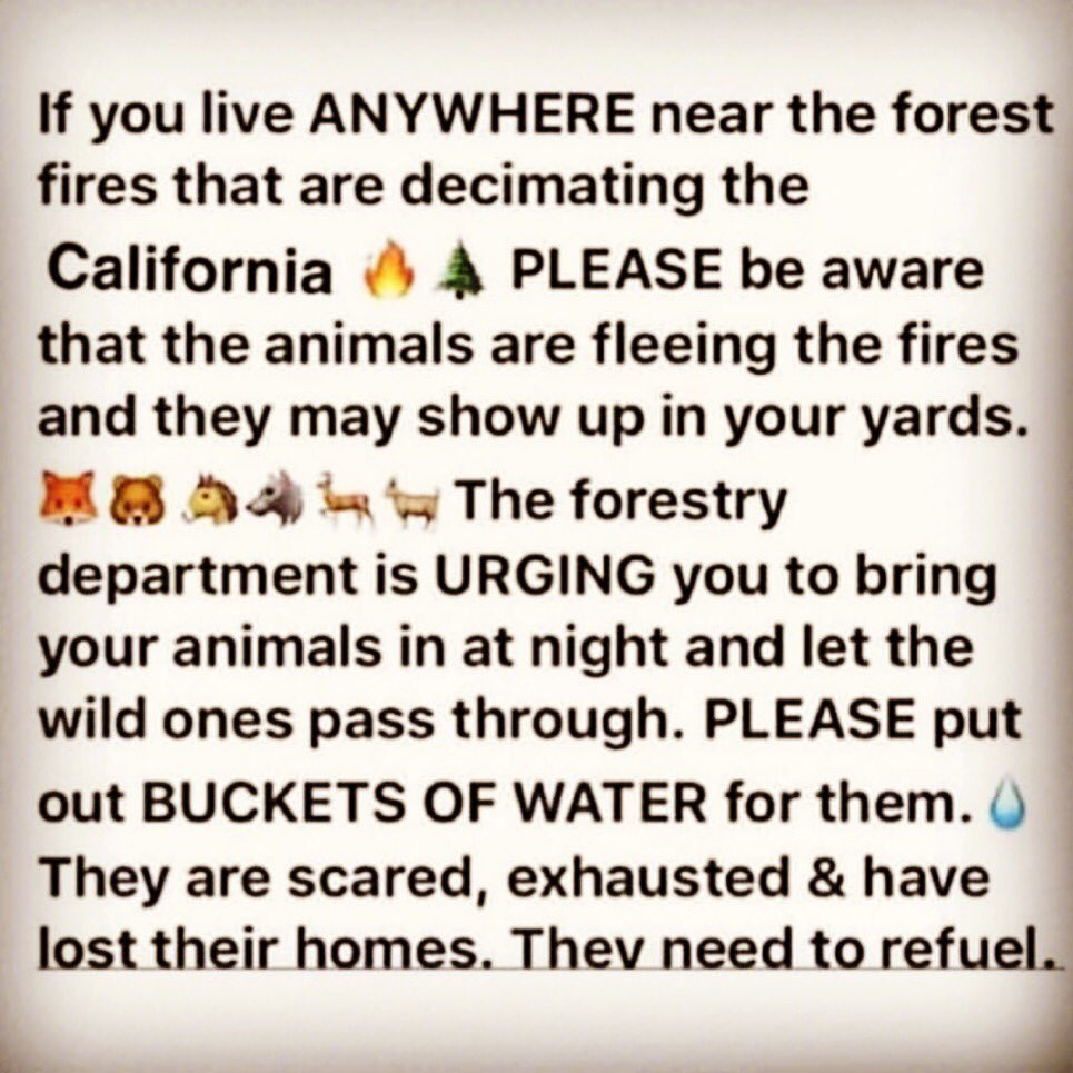 Heartbreaking 🙏🏼  #CaliforniaWildfires #lafires #Ventura #SantaClarita #SantaPaula