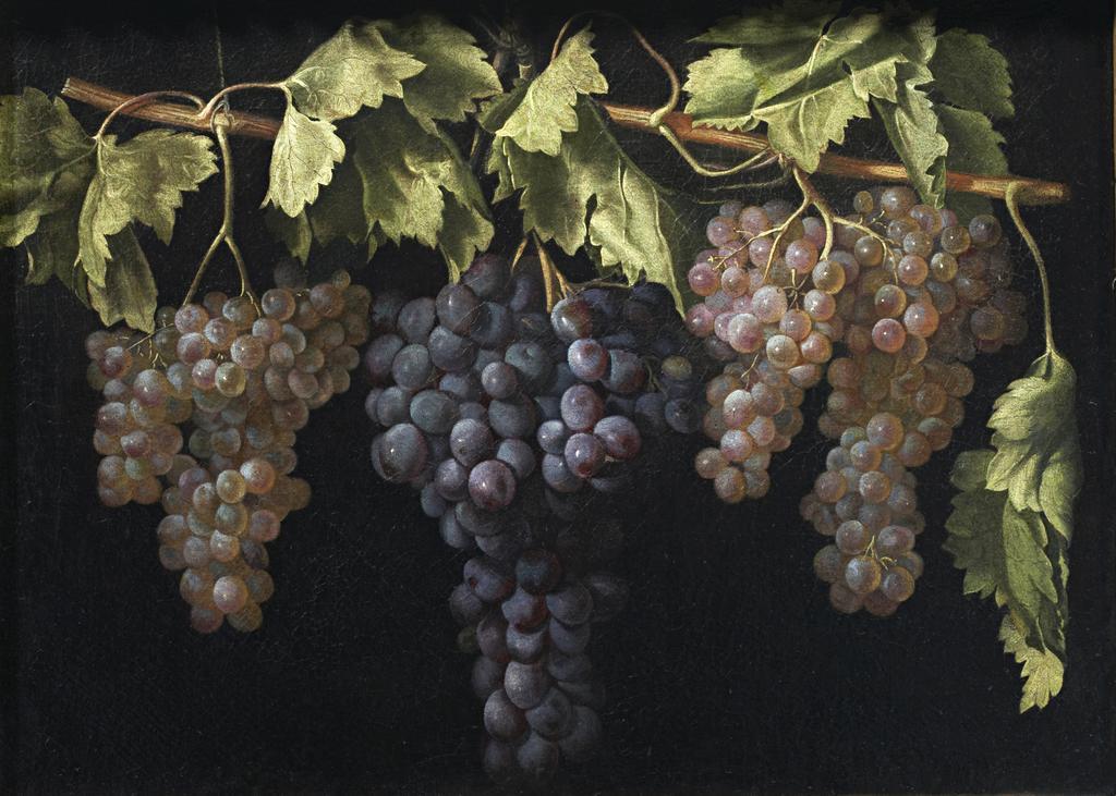 #OrgulloBarroco Las uvas de Apeles https...