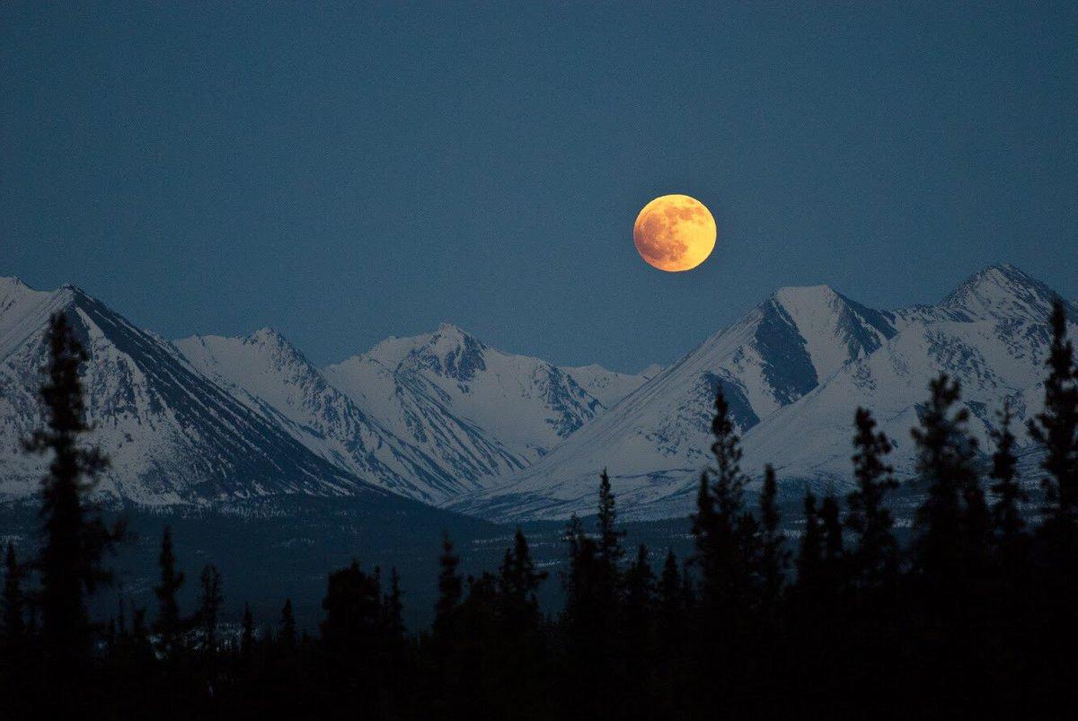 Winter is incredibly beautiful @DenaliNPS in #Alaska #fullmoon