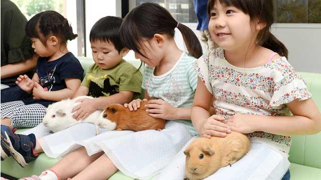 上野動物園の子ども動物園で働くアルバイト募集! 業務内容は「教育プログラムの対応と飼育業務の補助」。…