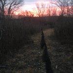 It felt colder than -3*C this am... but sunrise was amazing & we caught 56 birds! #konza #lter #ornithology