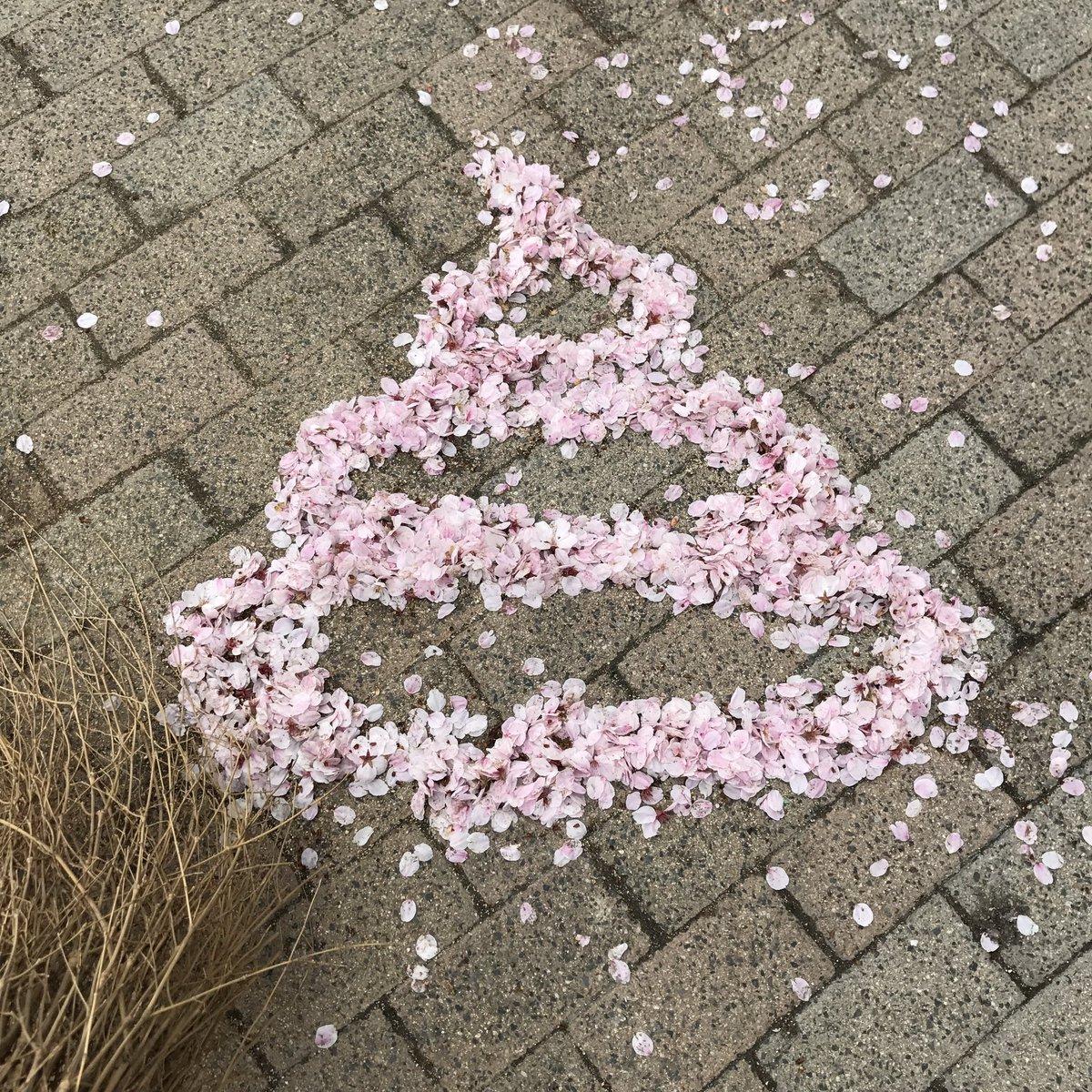 すごい!みて!これで春夏秋冬うんこ揃ったよ! https://t.co/tQft...