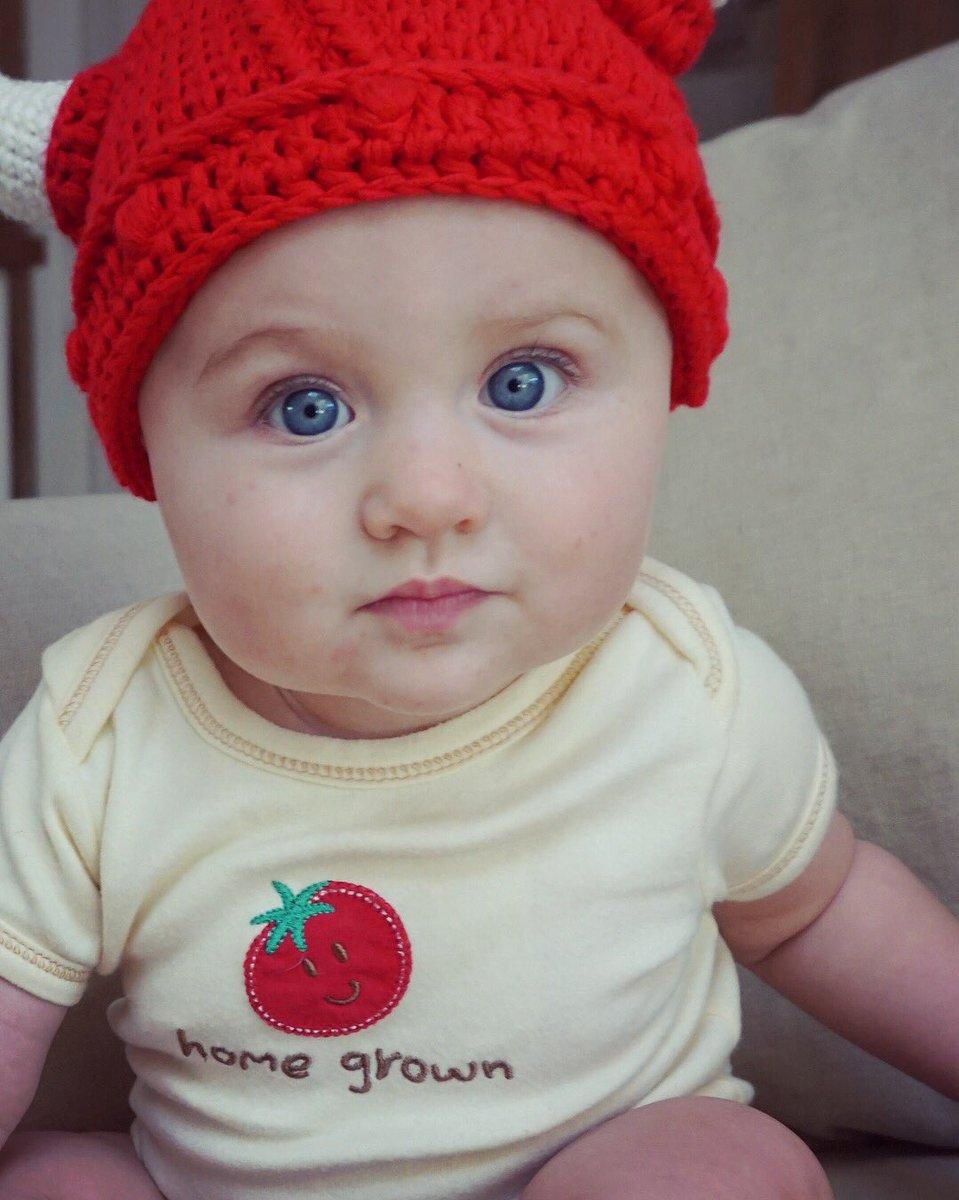 My little Viking baby is 7 months old today!!! #timeflies #bryansmini #birdiejoedanielson ❤️