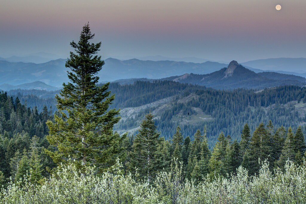 Earlier this week, the Trump administration recommended stripping protections from and shrinking Oregon's #CascadeSiskiyou National Monument – a unique and special place unlike anywhere else in the US. RT if you're with me: we must #KeepItPublic!
