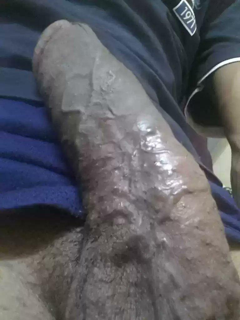 musta Pussy farts