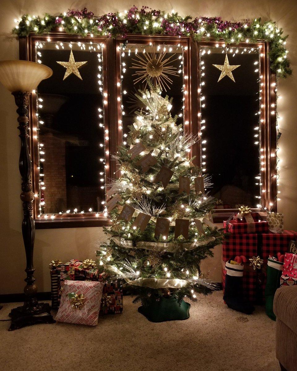 Happy Holidays! Forgive my lack of tree...