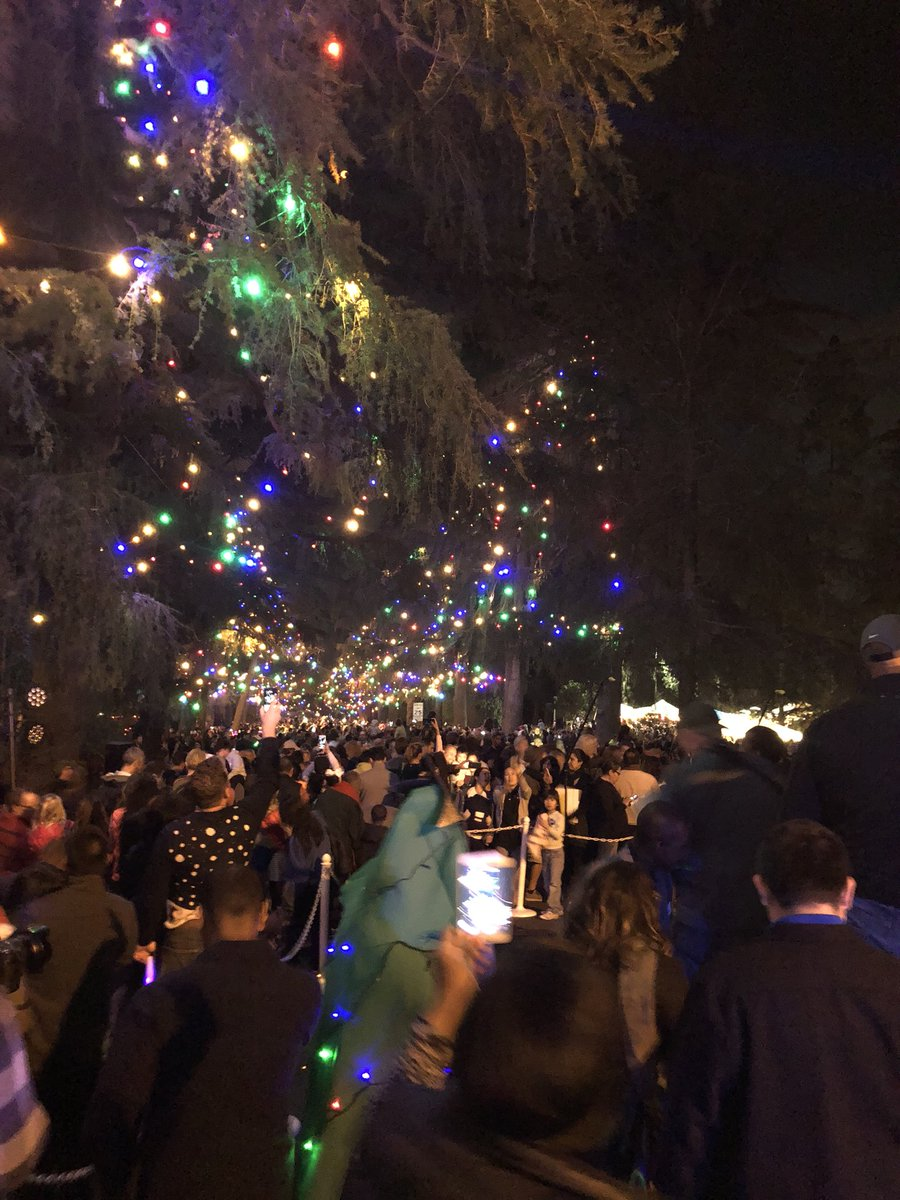 Deputy Dan Paige On Twitter Altadena S Christmas Tree Lane Is Now