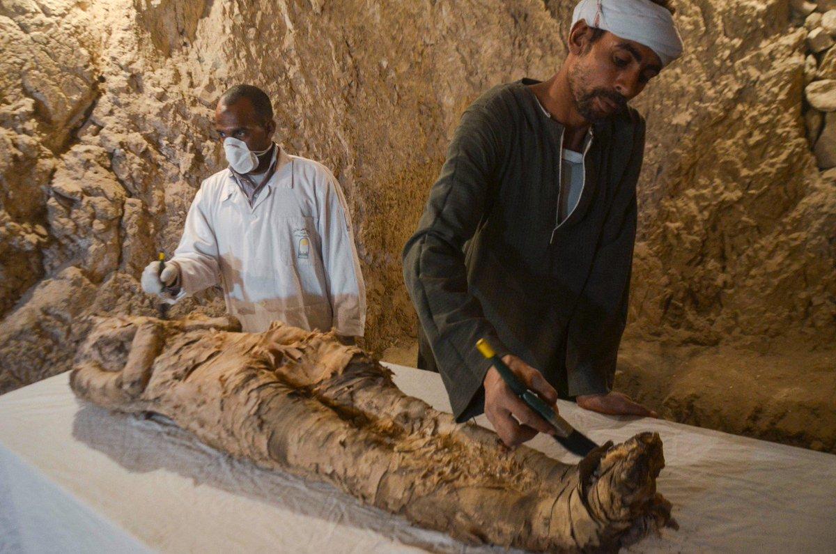 Arqueólogos descobrem múmia em tumba não explorada no Egito https://t.co/Q3LJ74JDAV #G1