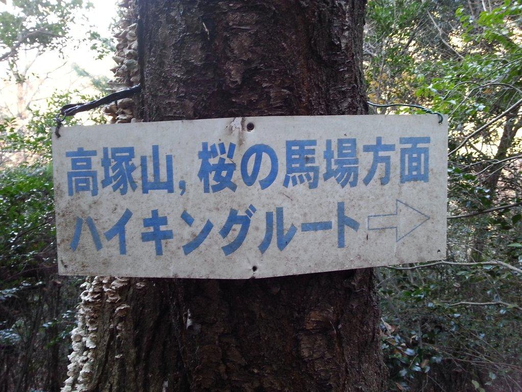 醍醐山 hashtag on Twitter