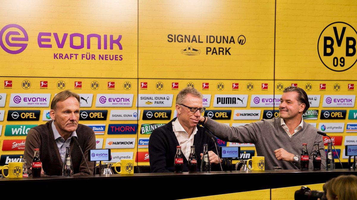 Боруссия Д отправила в отставку Боса и назначила новым тренером Штегера - изображение 1