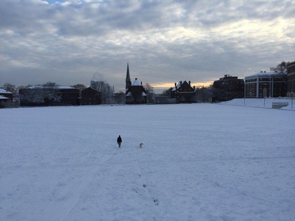 test Twitter Media - Kari & Mathilde making their way across a snowy @wesleyan_u campus @KariWeil https://t.co/CHWIFVlH5C