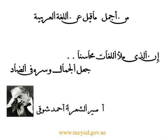 شعر عن اللغة العربية قصيرة جدا