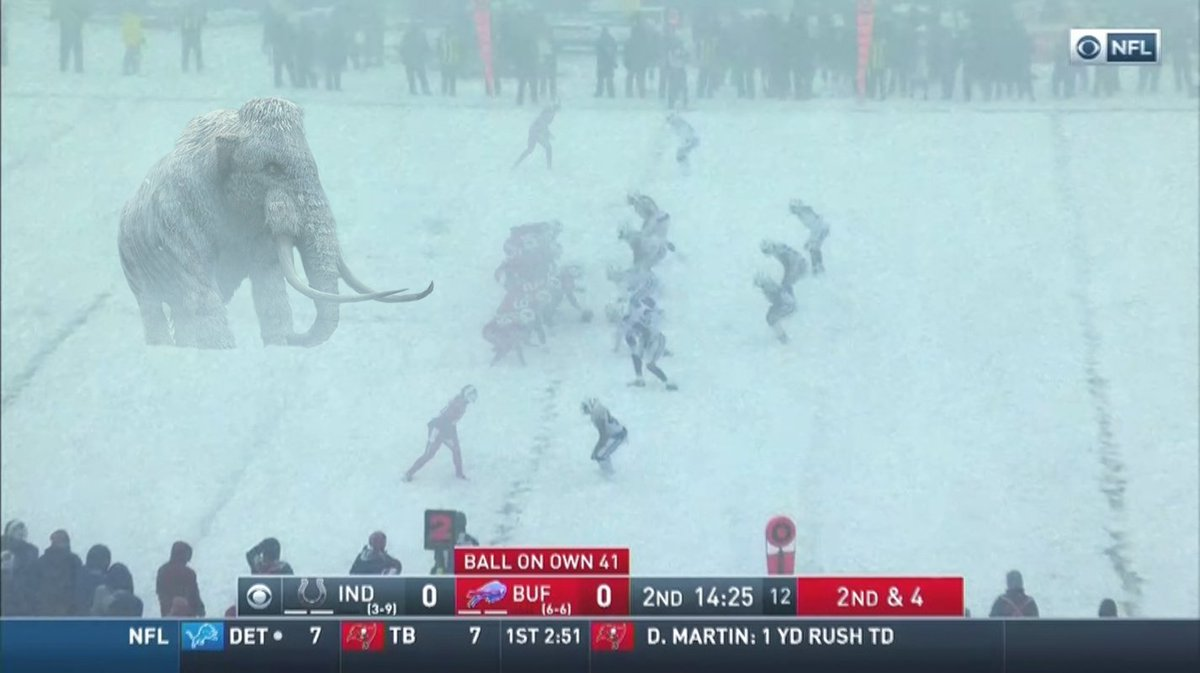 SPOTTED: Woolly Mammoth on field in Buffalo  *screenshot may be altered