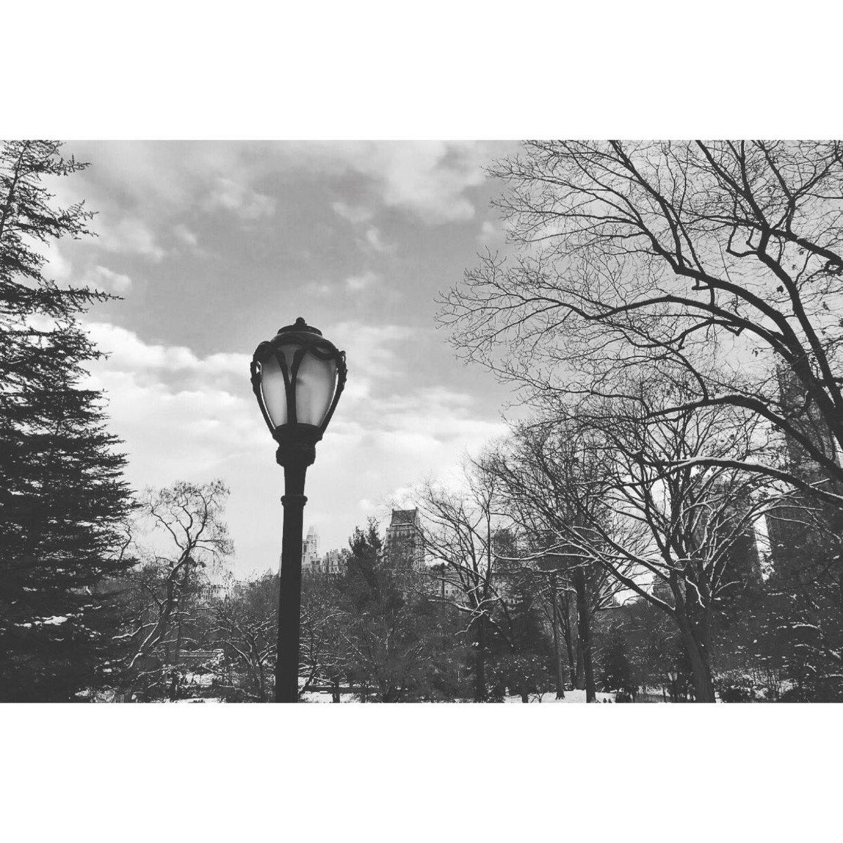 Central Park, New York instagram.com/p/BciejcsHnrJ/