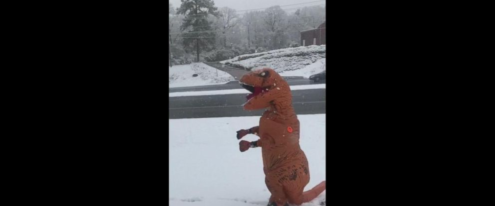 T-rex enjoys first day of snow, creates snow angels and snowballs. https://t.co/kS2g6OEHYc