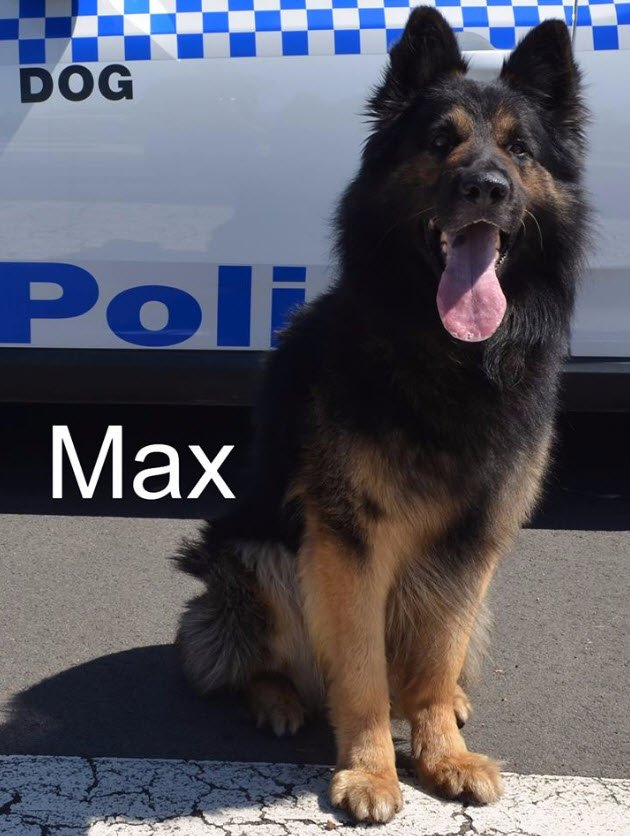 We'd like to wish PD Max a very Happy 8t...