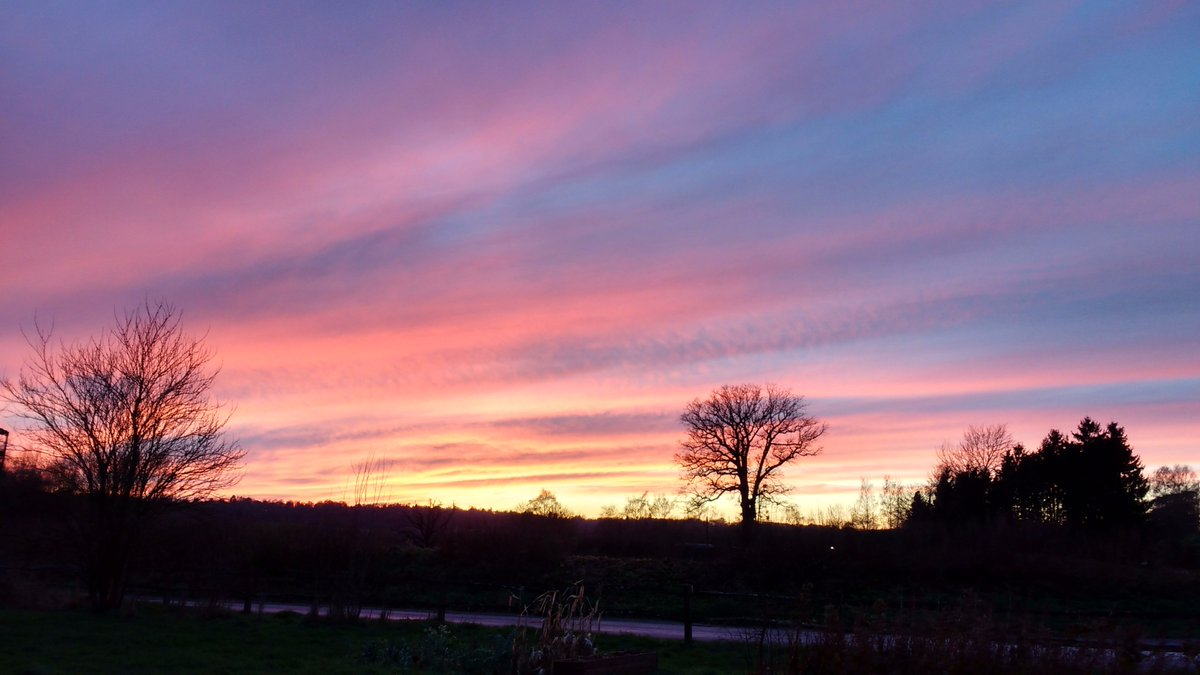 After the ghastly weather we've had today we've been rewarded here at Loseley with a magnificent sunset. No photoshopping of the picture - real colours! #redskyatnight #winterskies