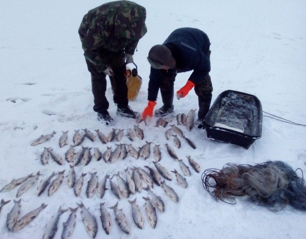 Лосось прогноз клева в Ненецком АО, г Нарьян-Мар на завтра, на неделю, на 10 дней