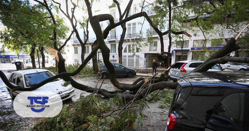#Sociedade Tempestade causa 13 desalojados, 1 morto e 5 feridos https://t.co/eeKzONM3le Em https://t.co/MDmhqgtnSp